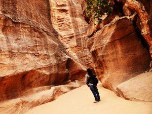 petra valley wander